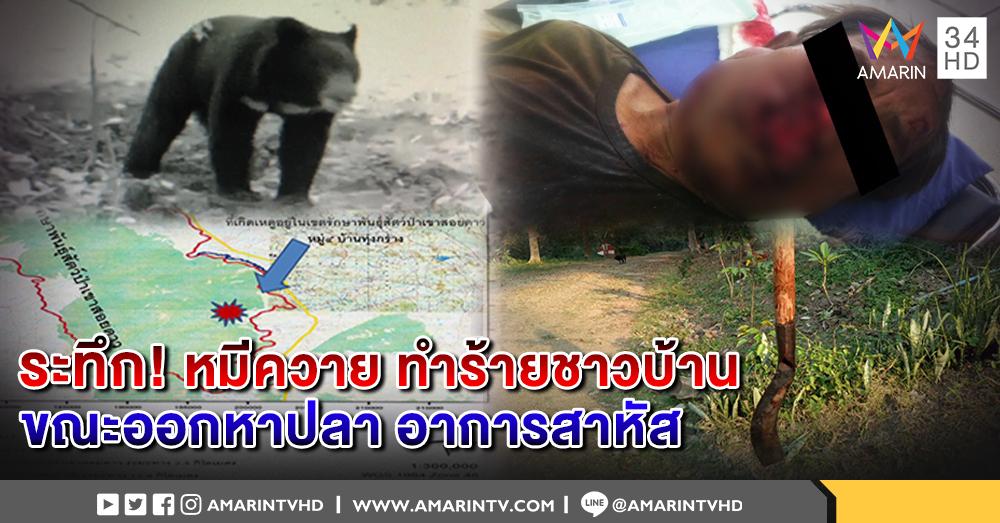 ระทึก! หมีแม่ลูกอ่อน ทำร้ายชาวบ้านเมืองจันทบุรีหวิดดับ ก่อนทหารชุดลาดตระเวนเข้าช่วยเหลือ