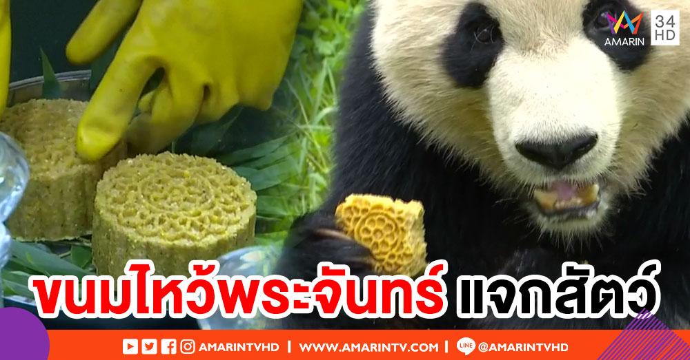 น่ารัก! สวนสัตว์จีน ทำขนมไหว้พระจันทร์สูตรพิเศษแจกสัตว์หลากสายพันธุ์