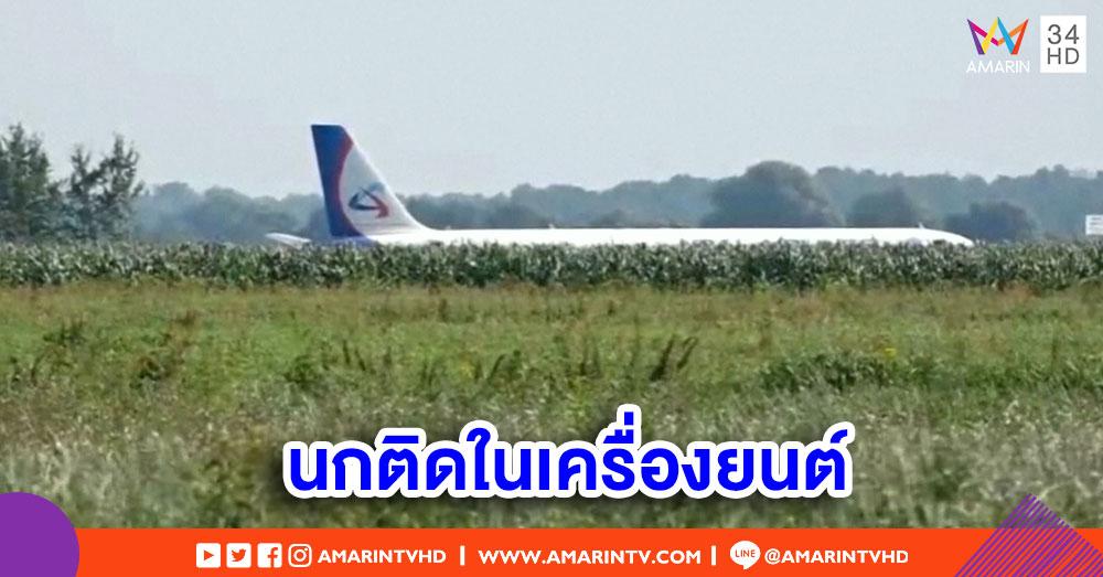 เครื่องบินรัสเซียลงจอดฉุกเฉิน หลัง 'นก' ติดอยู่ในเครื่องยนต์-บาดเจ็บ 4 ราย