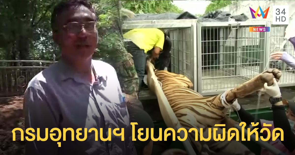 ผจก.มูลนิธิวัดป่าหลวงตาบัวโต้ปมเสือตาย อุทยานฯ โยนความผิดให้วัด