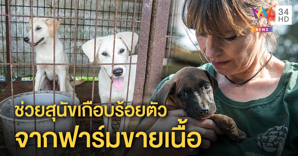 สะเทือนใจ! รุดช่วยสุนัขเกือบร้อยตัวจากฟาร์มขายเนื้อในเกาหลีใต้