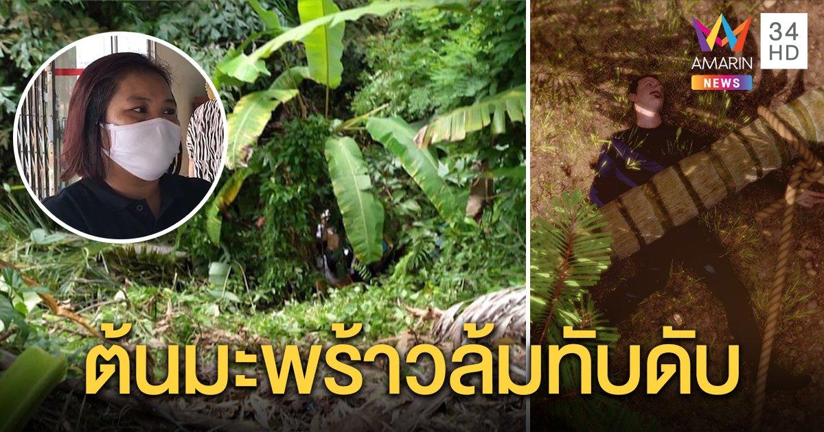 พ่อลูก 2 เจอพิษโควิดตกงานรับจ้างตัดต้นมะพร้าว พลาดถูกทับดับคาเหว เมียสุดเคว้ง (คลิป)