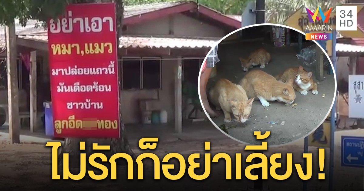 ชาวบ้านสุดทน เขียนป้ายด่าแรงพวกทิ้งหมาแมว ต้องเลี้ยง 70 ตัว พ่อวัย 85 สละเงินคนแก่ซื้ออาหาร