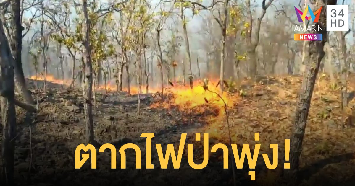 ตากไฟป่าพุ่ง 333 จุด สูงสุดเหนือเขื่อนภูมิพล ฮ.บินดับไฟไม่ได้