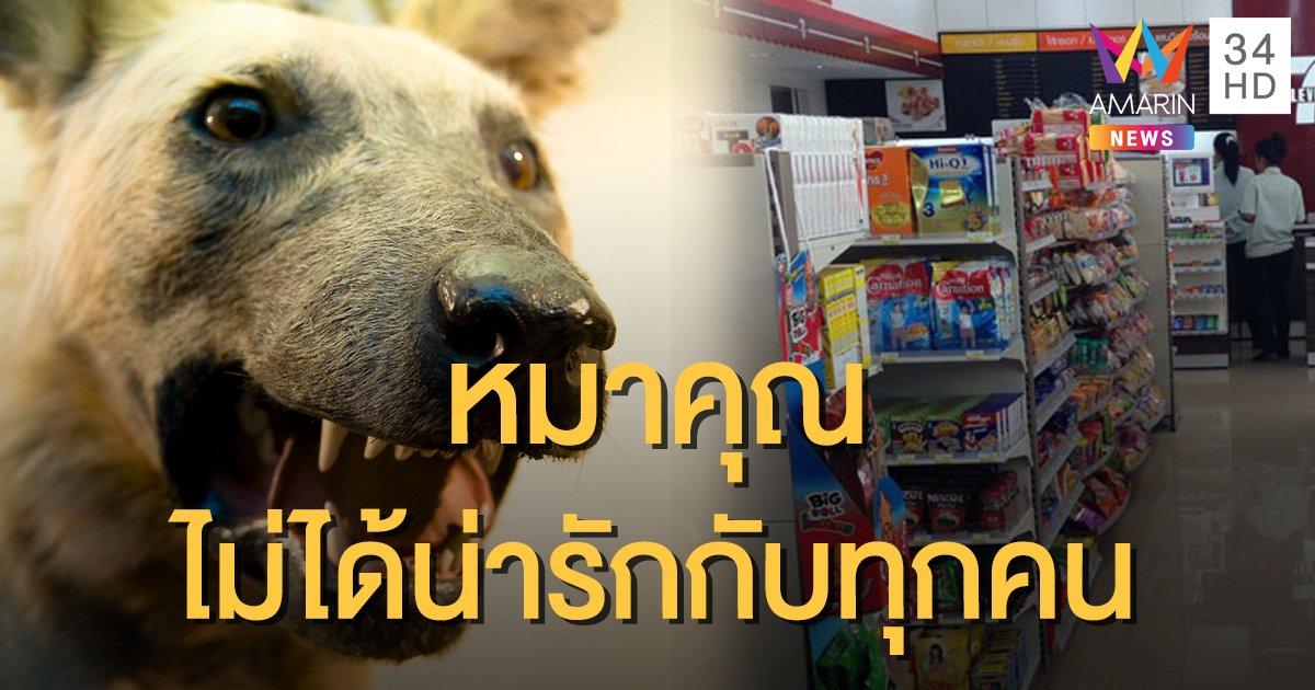 """เพจดังเปิดเหตุผล 3 ข้อ ที่ไม่ควรนำ """"หมา"""" เข้าร้านสะดวกซื้อ"""