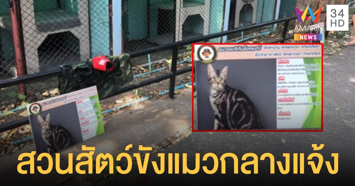 สะเทือนใจทาส! แมวสวนสัตว์ ถูกจับขังกรงกลางแจ้ง ชี้สถานที่ไม่เหมาะสม