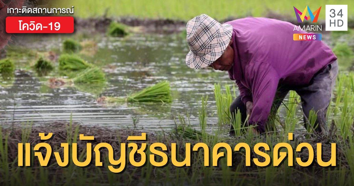 เช็กเลย! www.เยียวยาเกษตรกร.com เกษตรกร 1.2 แสนคน รีบแจ้งเลขบัญชีภายใน 10 ก.ค.นี้