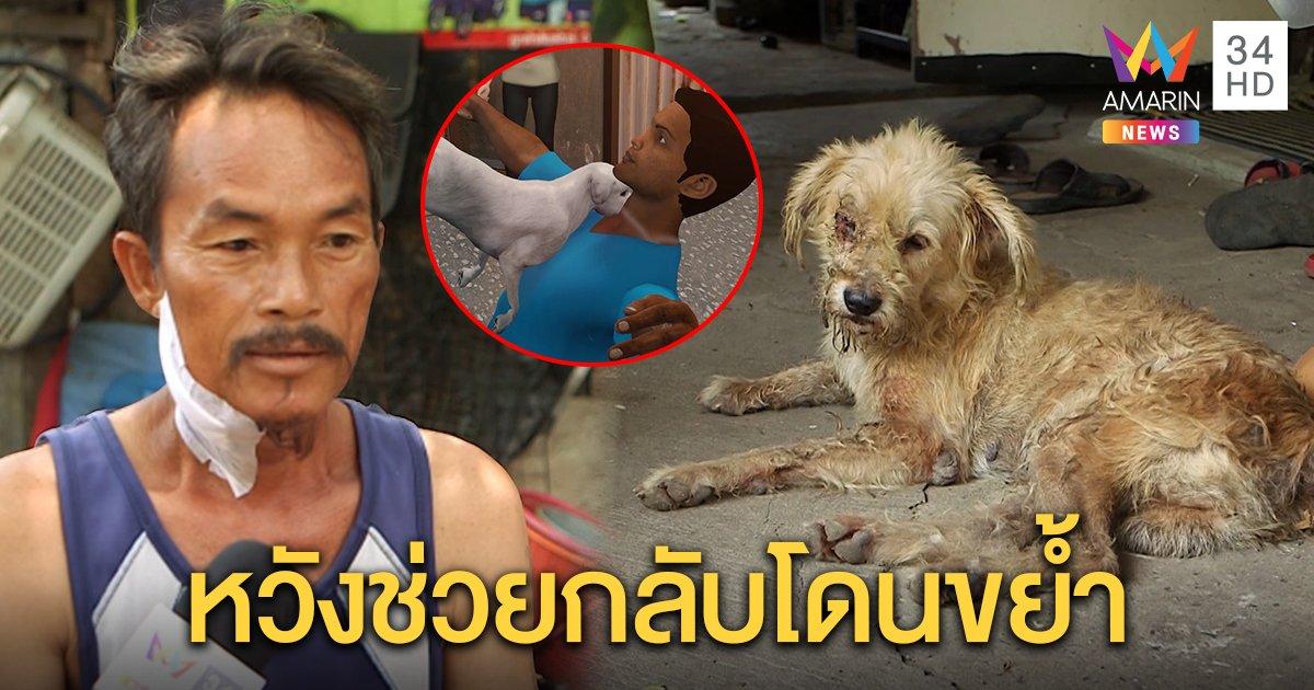 ชายเล่านาทีเข้าช่วยหมาถูกไก่จิกตา กลับเจอขย้ำคอสาหัส เผยจำฝังใจ (คลิป)