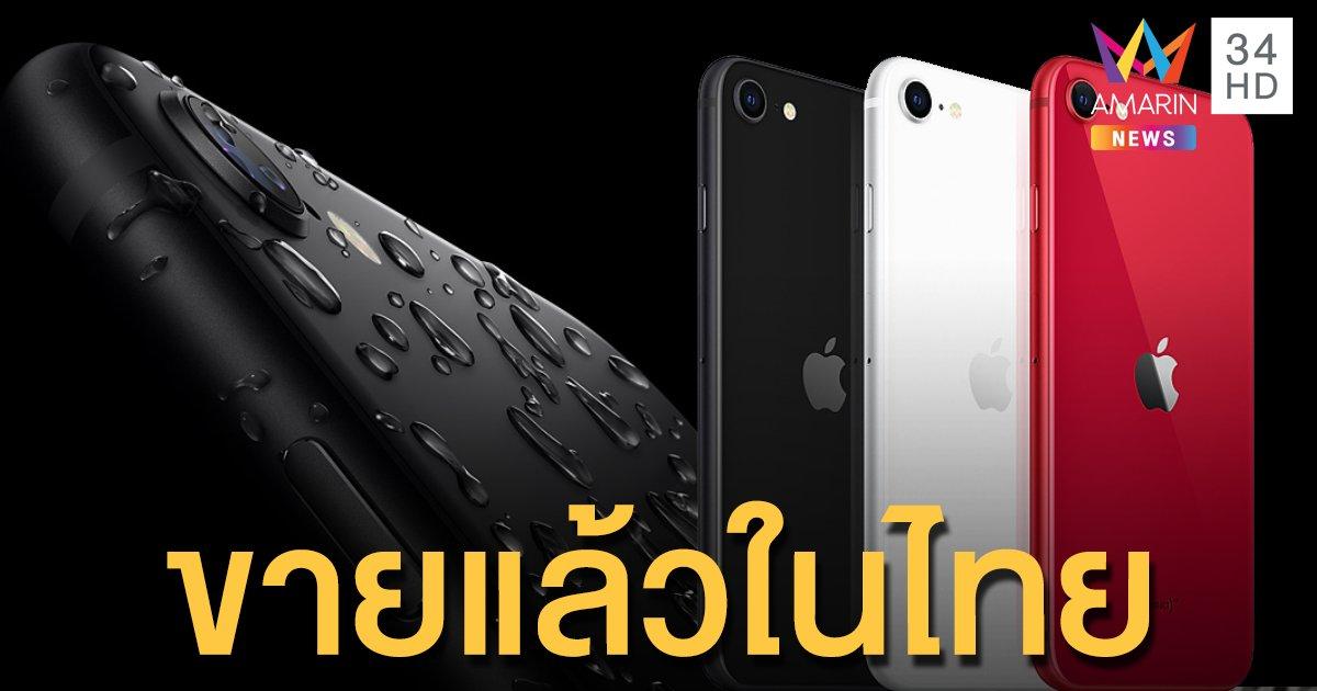 """สาวกแอปเปิลกรี๊ด """"iPhone SE""""  รุ่นล่าสุด เปิดให้ซื้อแล้ว ราคา 14,900 สเปกเริ่ด!"""