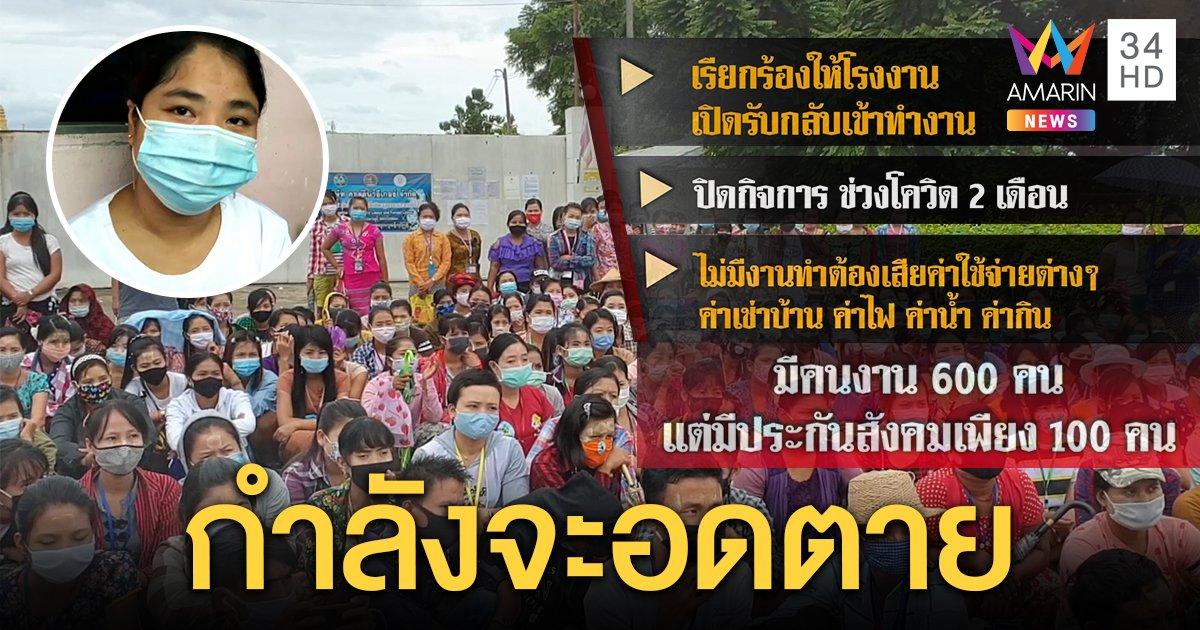 เปิดชีวิตแรงงานพม่าในไทย สุดลำเค็ญ พิษโควิดโรงงานปิด ต้องตกงานยาว (คลิป)