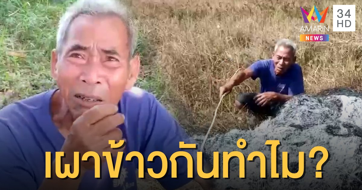 เจออีก! ตาวัย 67 ปล่อยโฮ ถูกมือดีแอบเผาข้าวเสียหาย 100 ถัง
