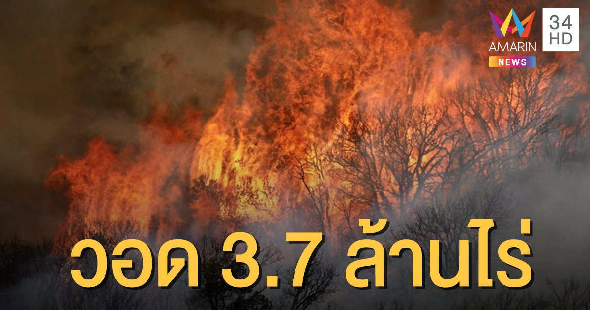 ไฟป่าแคลิฟอร์เนียยังโหมหนัก เสียหาย 3.7 ล้านไร่ ดับแล้ว 7 ราย