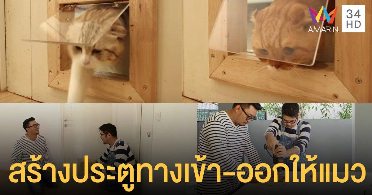 เจ้าทาสเราอยากได้! สร้างประตูทางเข้า-ออกให้แมว